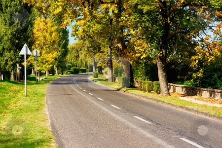 Autumn Road stock photo, Main road going between colorful autumn trees by P?