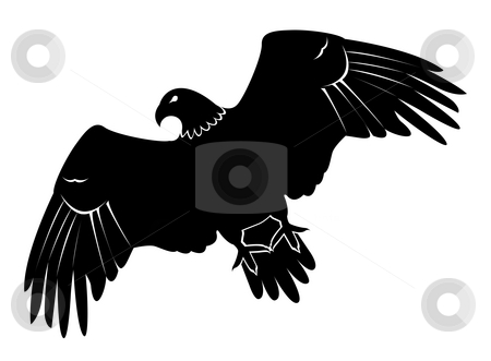 Eagle stock photo, Drawing of eagle in a white background by Su Li