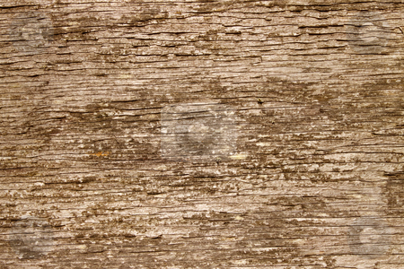 Natural brown rough wood texture background. stock photo, Natural brown rough wood texture background. by Stephen Rees