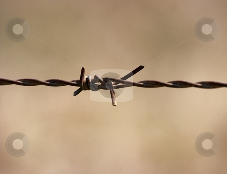 Wire stock photo, Barbed wire fence closeup with small DOF by P?
