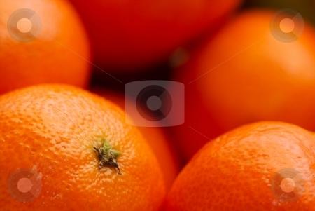 Tangerine stock photo, Tangerines by P?