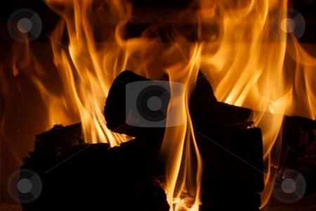 Openfire stock photo, Burning log in an openfire by P?
