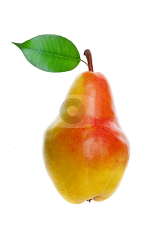 Pear stock photo, A juicy ripe pear on white background by Steve Mcsweeny