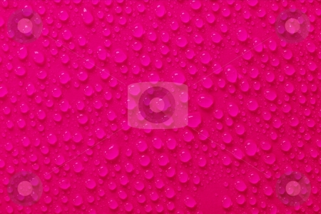 Droplets stock photo, Water droplets on pink surface by P?