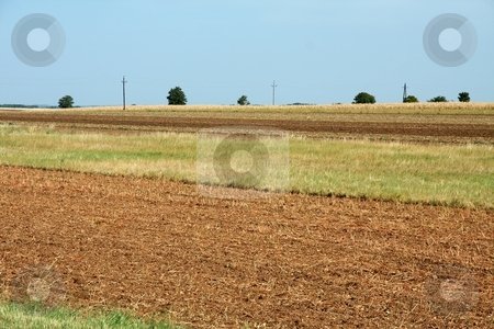 Field stock photo, Dry agricultural field on a plain in summer by P?
