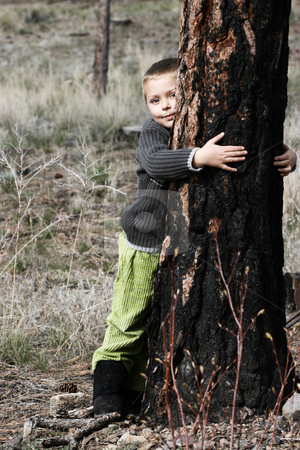 Nature boy stock photo, Little boy hugging a big tree in the woods by Vanessa Van Rensburg