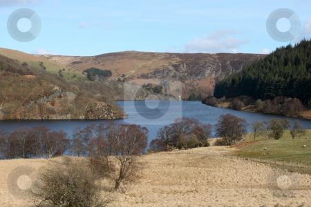 PenyGarreg reservoir, Elan Valley Wales UK. stock photo, PenyGarreg reservoir, Elan Valley Wales UK. by Stephen Rees