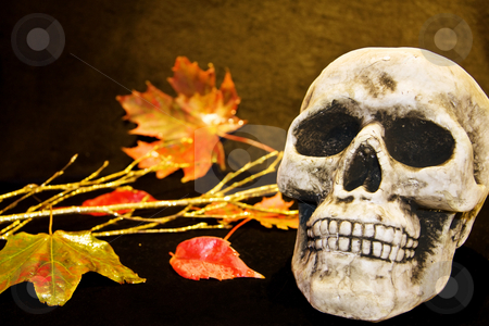 Halloween scary skull stock photo, Celebrating Halloween with scary human skull and dead leaves. by Andreea Chiper