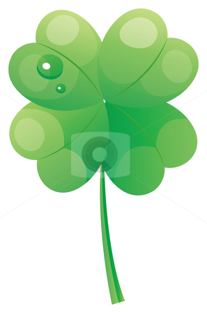 Leaf and raindrops stock photo, Four Leaf Clover with water drops  in a white background by Su Li