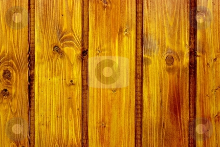 Wood stock photo, Yellowish wood texture closeup by P?