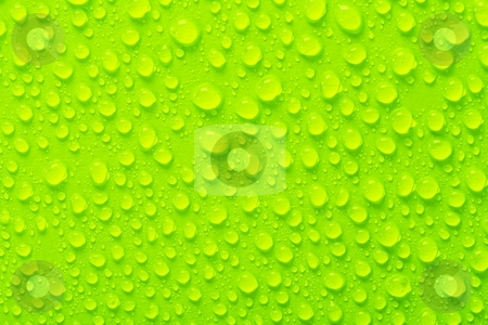 Droplets stock photo, Water droplets on green surface by P?