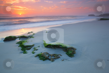 Moss Sunset stock photo, Image of a Sunset on a beach in the Western Cape South Afrcia by Kobus Tollig