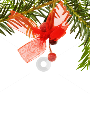 Christmas festive border stock photo, Celebrating Christmas with pine tree and red ribbon border. Copy space. Isolated on white background. by Andreea Chiper