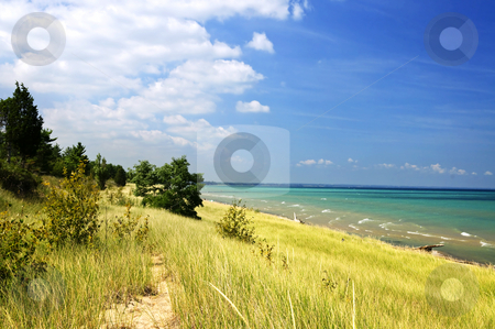 Sand dunes at beach stock photo, Sand dunes at beach shore. Pinery provincial park, Ontario Canada by Elena Elisseeva