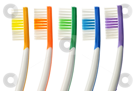 Toothbrushes stock photo, Close up of multicolored toothbrushes on white background by Elena Elisseeva