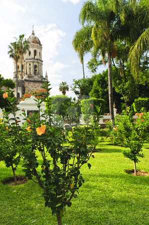 Templo de la Soledad, Guadalajara Jalisco, Mexico stock photo, Hibiscus blooming near Temple of Solitude or Templo de la Soledad, Guadalajara Jalisco, Mexico by Elena Elisseeva