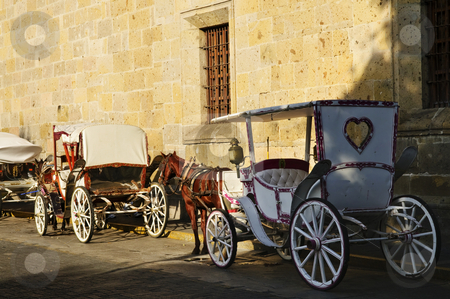 Horse drawn carriages in Guadalajara, Jalisco, Mexico stock photo, Horse drawn carriages waiting for tourists in historic Guadalajara, Jalisco, Mexico by Elena Elisseeva