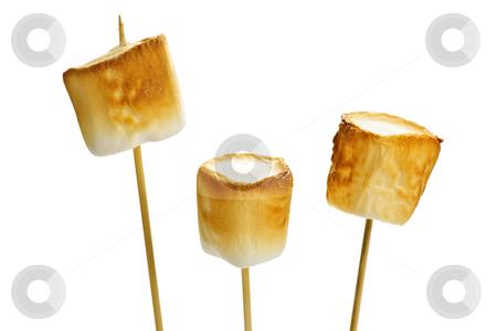 Toasted marshmallows stock photo, Three golden toasted marshmallows on wooden skewers by Elena Elisseeva