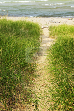 Path to beach stock photo, Entrance path to beach. Pinery provincial park, Ontario Canada by Elena Elisseeva