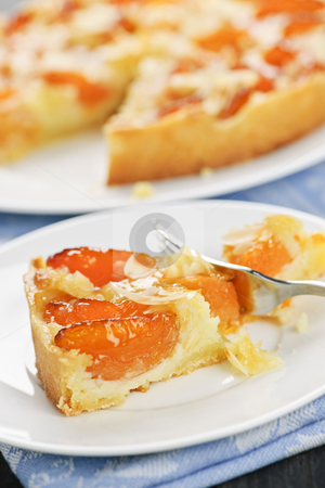 Slice of apricot and almond pie stock photo, Slice of fresh baked apricot and almond pie dessert by Elena Elisseeva