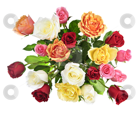 Bouquet of roses from above stock photo, Bouquet of assorted multicolored roses from above isolated on white background by Elena Elisseeva