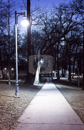 Park path at night stock photo, Path through city park at night with street lamps by Elena Elisseeva