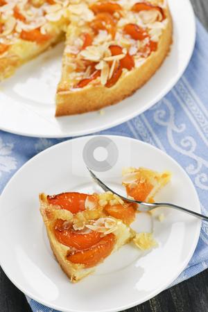Slice of apricot and almond pie stock photo, Slice of fresh baked apricot and almond pie dessert by Elena Elisseeva