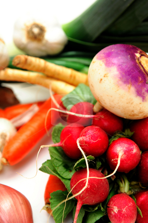 Root Vegetables stock photo, Assorted root veggies including Turnip radish parsnip carrot green onion Spanish onion garlic and leek on a light colored background by Lynn Bendickson