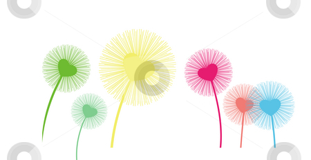 Dandelion stock photo, Dandelion seeds being blown in the wind by Su Li