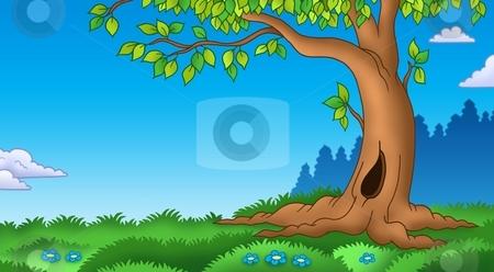 Leafy tree in grassy landscape stock photo, Leafy tree in grassy landscape - color illustration. by Klara Viskova