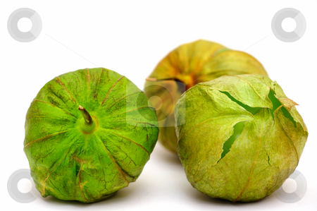 Tomatillo For Salsa Verde stock photo, Three ripe tomatillos on a light colored background with various shades of green and brown on the husk ready to be peeled and used as the main ingredient for Mexican salsa verde. by Lynn Bendickson