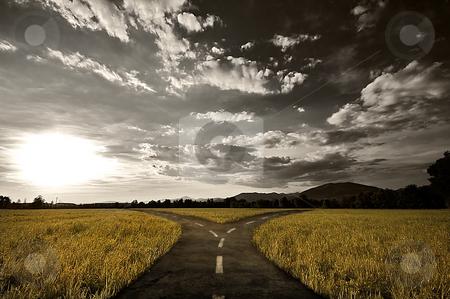 Crossroad stock photo, Crossroad in rural landscape under dusk sky by Giordano Aita