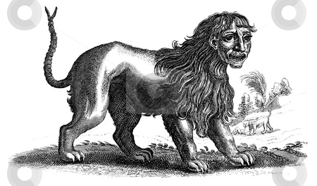 Engraving of mythical Manticore beast stock photo, Engraving of mythical Manticore or Martigora beast, isolated on white background. Published in book,