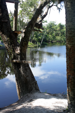 The Ol' Swimmin' Hole (1) stock photo, A rope swing is ready to take someone out into a lazy river. by Carl Stewart