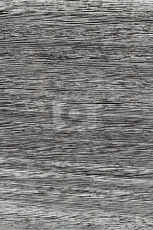 Gray wood texture lines close up natural abstract background. stock photo, Gray wood texture lines close up natural abstract background. by Stephen Rees
