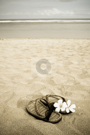 Beach vacation stock photo, A pair of sandals, glasses and flowers on the sandy beach by Suprijono Suharjoto