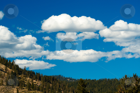 Beautiful scenery stock photo, A beautiful view of alpine meadow with white clouds and blue sky by Suprijono Suharjoto