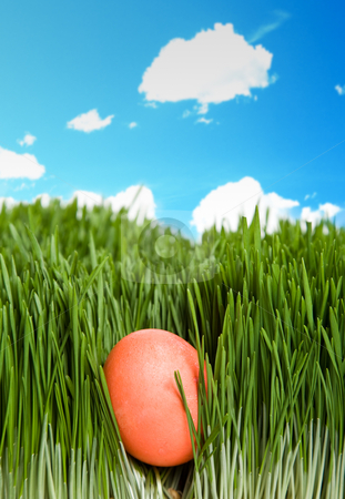 Easter egg stock photo, A shot of an easter egg hidden in grass under the blue sky by Suprijono Suharjoto
