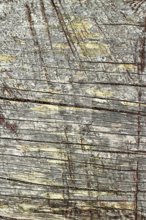 Old weathered wood texture natural abstract. stock photo, Old weathered wood texture natural abstract. by Stephen Rees