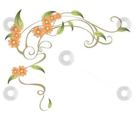 Orange flower stock photo, Drawing of beautiful flower in a white background by Su Li