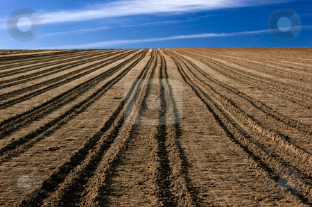 Ploughed field stock photo, Ploughed field ready to be cultivated by ikostudio