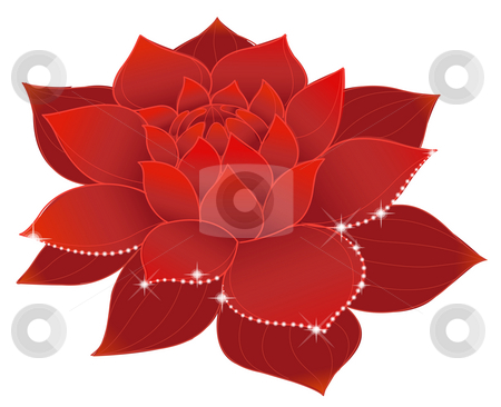 Lotus stock photo, Illustration drawing of beautiful red lotus with shine by Su Li