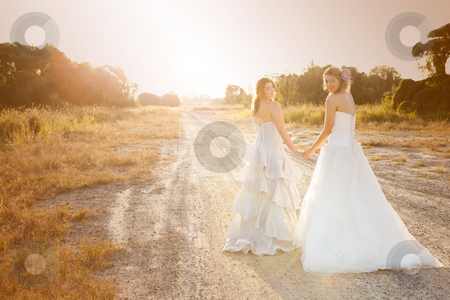 Bride and Bridesmaid on a Country Road stock photo, Attractive young bride and bridesmaid in formal attire looking over their shoulders at the camera.  They are walking on a country road. Horizontal shot. by Angela Hawkey