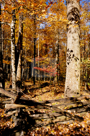 Fall in New England stock photo, A wooden fence with fall leaves in the back ground. by Bonnie Fink