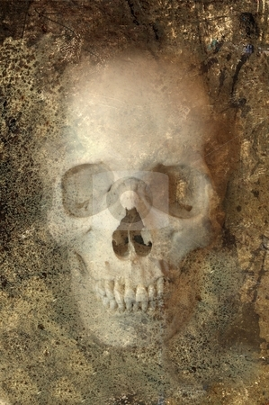 Grunge Skull stock photo, Grinning skull embedded in rock by Leslie Murray