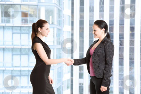 Two businesswomen shaking hands stock photo, Two businesswomen shaking hands in the office by Suprijono Suharjoto