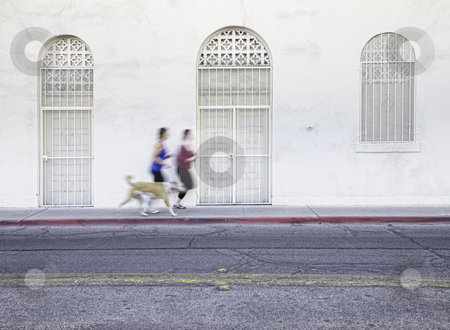 Women jogging with pet dog stock photo, Two women running with dog along city street by Scott Griessel