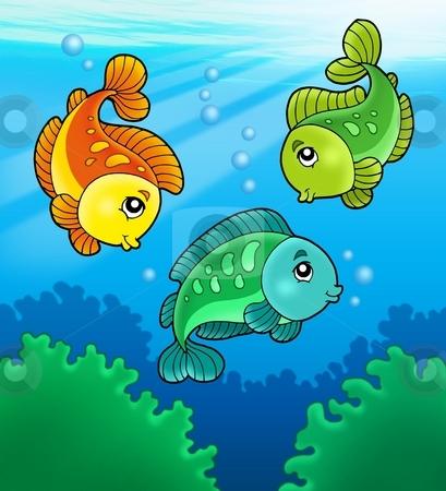 Three cute freshwater fishes stock photo, Three cute freshwater fishes - color illustration. by Klara Viskova