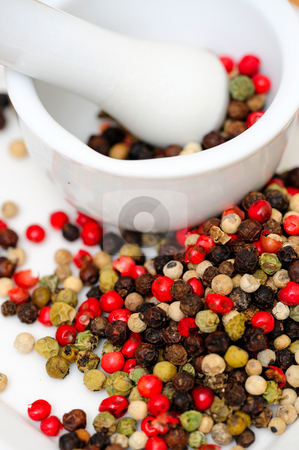 Spicy Rainbow Peppercorns stock photo, Peppercorns in various colors of red, green and the familiar black peppercorn on white with a Mortar and Pestle by Lynn Bendickson