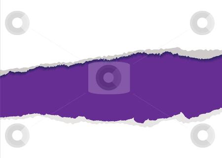 Purple torn strip background stock vector clipart, Purple background with torn strip and feathered edges copyspace by Michael Travers
